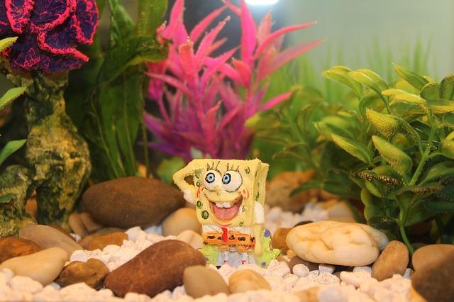 postavička spongeboba