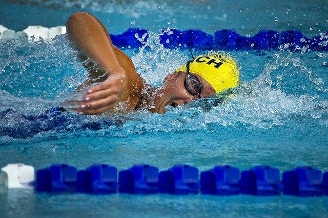 Plavecké závody.jpg